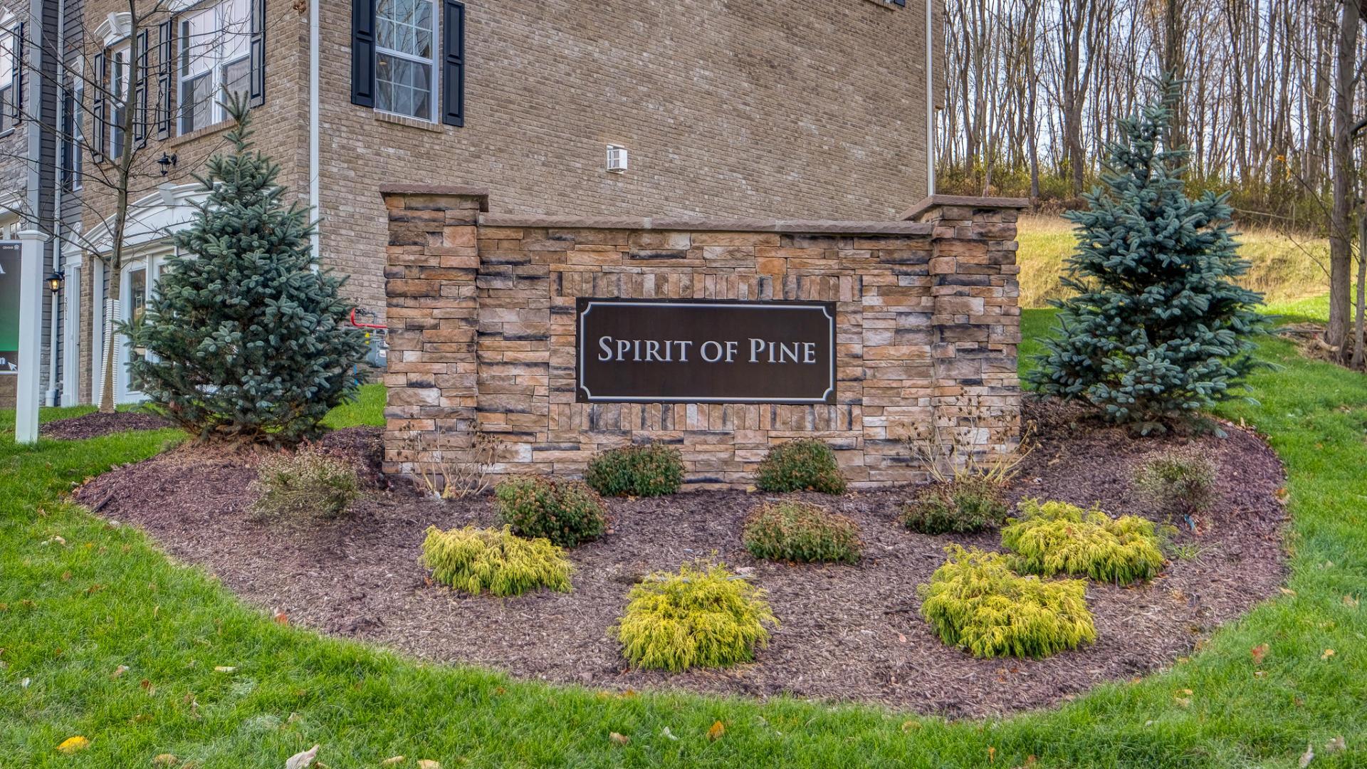 Spirit Of Pine,15090