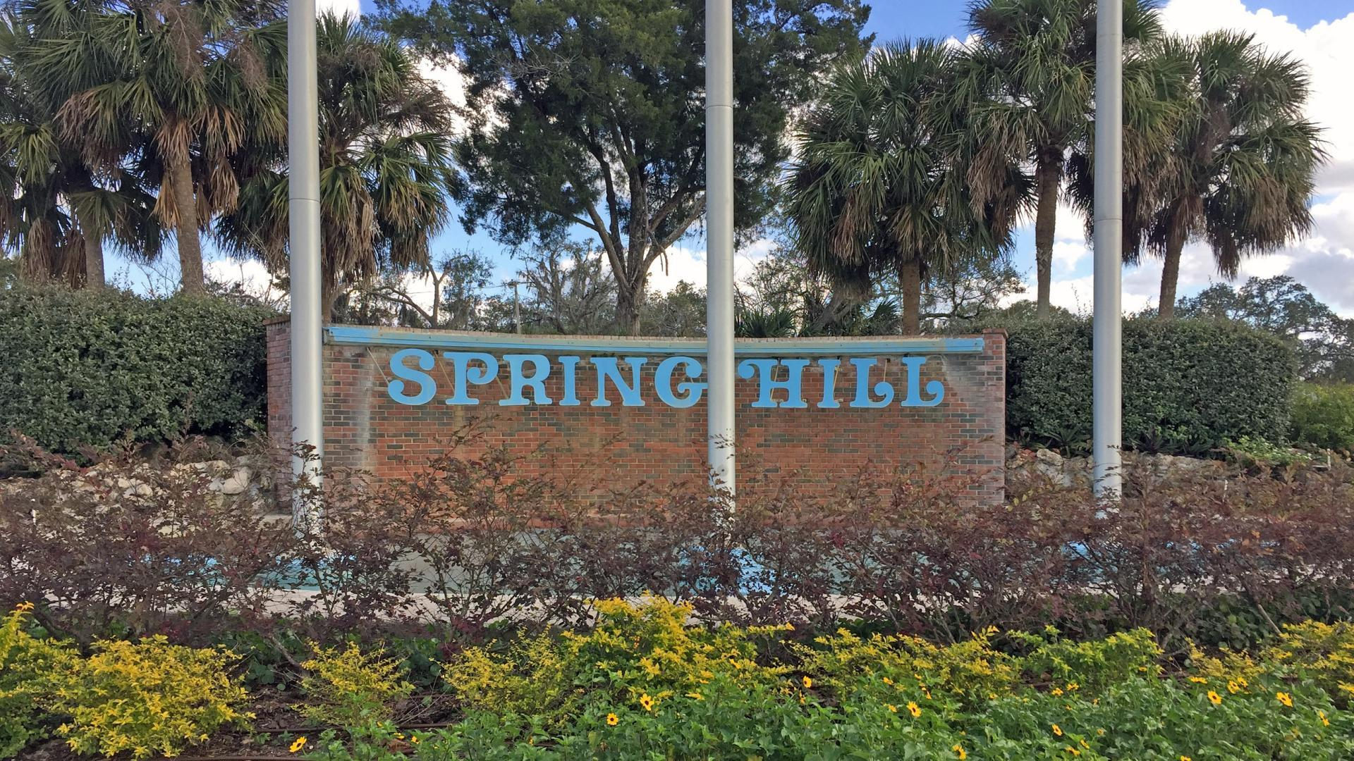 'Spring Hill' by MARONDA - TAMPA NORTH in Tampa-St. Petersburg