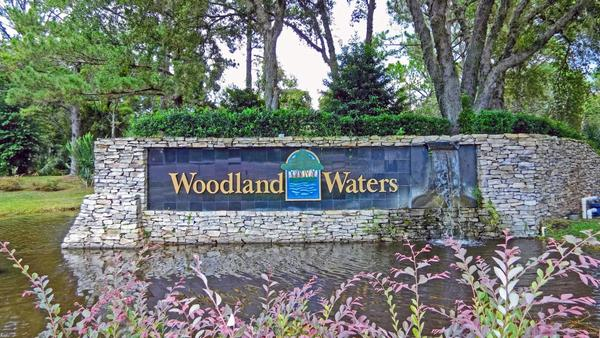 Woodland Waters,34613