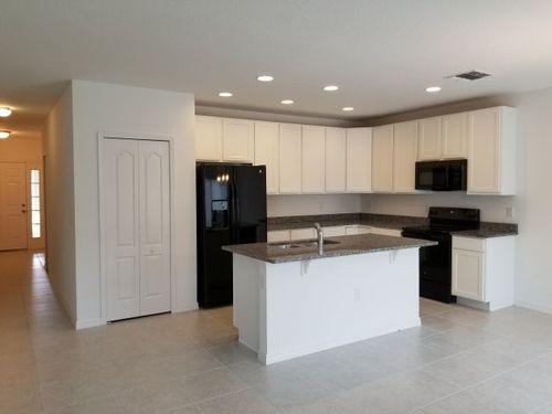 Kitchen-in-Avella-at-Spring Hill-in-Spring Hill