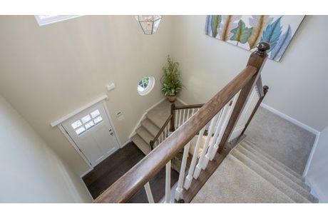 Stairway-in-Chatham-at-Weaver Ridge-in-Marysville