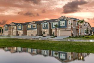Ormond - Avea Pointe: Lutz, Florida - Mattamy Homes