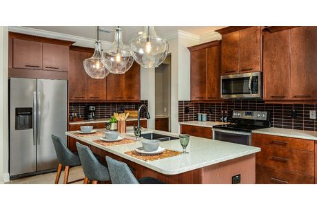 Kitchen-in-Ormond-at-Bayside Terrace-in-Oldsmar