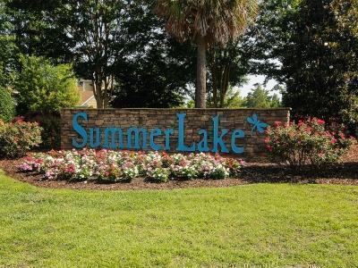 SummerLake,29072