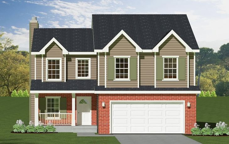Red Maple:Elevation C