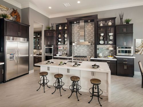 Kitchen-in-Venice-at-Bellissima-in-Cave Creek