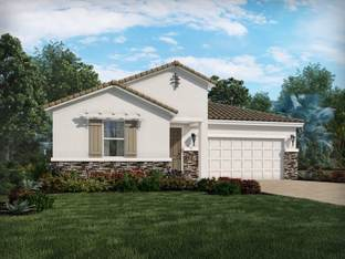 Sunstar - Venice Woodlands: North Venice, Florida - Meritage Homes