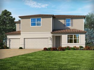 Zircon - Heron Landing: Sarasota, Florida - Meritage Homes