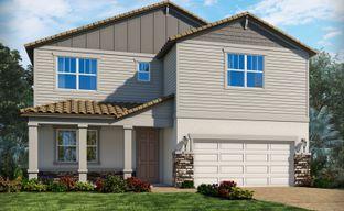 Savanna at Lakewood Ranch - Classic Series by Meritage Homes in Sarasota-Bradenton Florida