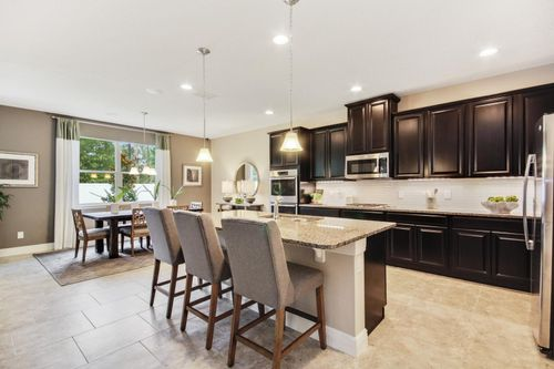 Kitchen-in-Seaside-at-Orchid Estates-in-Apopka