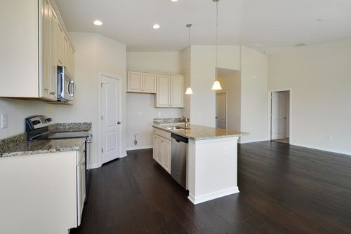 Kitchen-in-Jasmine Cove-at-Champions Reserve-in-Davenport