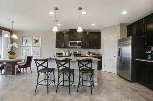 Kitchen-in-Parkland-at-Forest Lake Estates-in-Ocoee