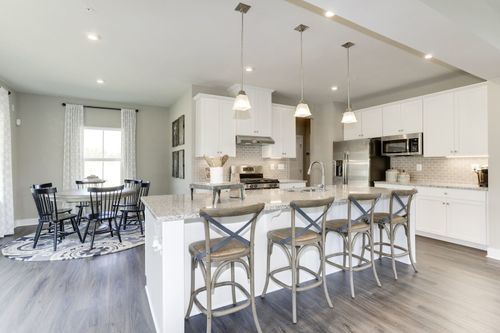 Chestnut Hill Preserve - Twin Homes by Ryan Homes in Wilmington-Newark Delaware