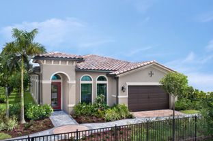 Antigua Grande- The Whitehall Collection - The Falls at Parkland Single Family Homes 55+: Parkland, Florida - Ryan Homes