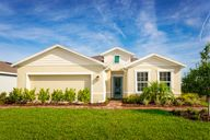 Cypress Preserve Single Family Homes by Ryan Homes in Tampa-St. Petersburg Florida
