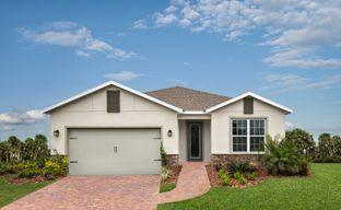 Lucaya Lake Club - Signature by Ryan Homes in Tampa-St. Petersburg Florida