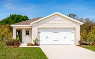 Zephyr Place by Ryan Homes in Tampa-St. Petersburg Florida