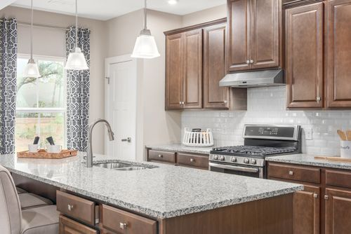 Kitchen-in-Hudson-at-Whitmore Place-in-Plainfield