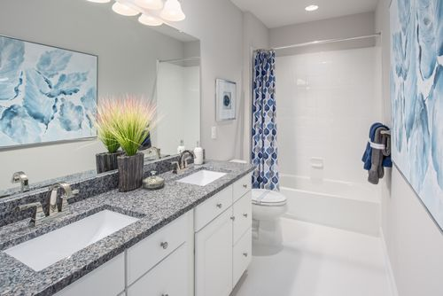Bathroom-in-Monocacy-at-55+ Active Adult Villas at Boxwood-in-Urbana