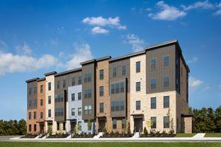 Hayes - Paddock Pointe Townhome Condos: Laurel, Maryland - Ryan Homes