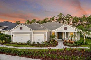 Captiva - Grand Palm: Venice, Florida - Neal Communities