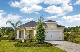 Liberty 3 - Silverleaf: Parrish, Florida - Neal Communities
