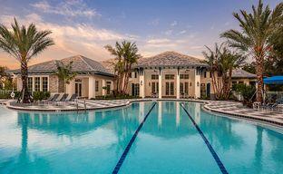 Grand Palm by Neal Communities in Sarasota-Bradenton Florida