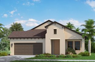 Applause - Vicenza: North Venice, Florida - Neal Communities