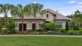 Starlight - Vicenza: North Venice, Florida - Neal Communities