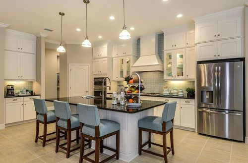 Kitchen-in-Kiawah-at-Grand Palm-in-Venice