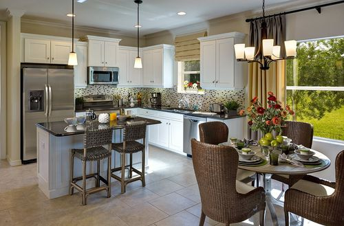 Kitchen-in-Expression-at-Cypress Walk-in-Fort Myers