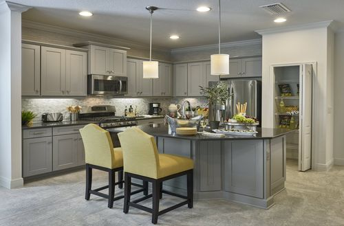 Kitchen-in-Tidewater-at-FishHawk Ranch Sagewood-in-Lithia