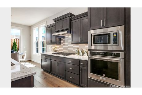 Kitchen-in-Lot 47-at-Highlands at North Bethany-in-Portland