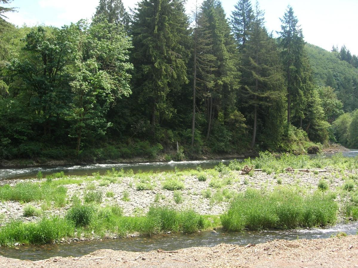 'Kalama River Estates' by Olin Homes, LLC in Portland-Vancouver