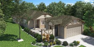 The Aston Park - Aubrey Creek Estates: Aubrey, Texas - Pacesetter Homes Texas