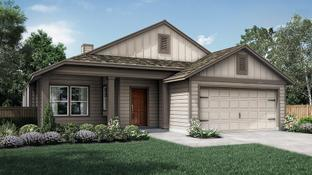 The Coral Cay - Orchard Ridge: Liberty Hill, Texas - Pacesetter Homes Texas