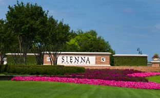 Sienna 50' by Perry Homes in Houston Texas