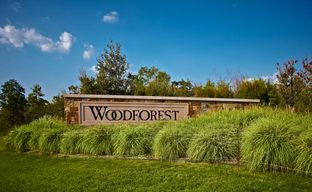 Woodforest 50' by Perry Homes in Houston Texas