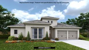 2943S - The Grove at Vintage Oaks 65': New Braunfels, Texas - Perry Homes