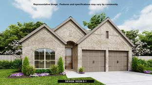 1653W - The Colony 45': Bastrop, Texas - Perry Homes