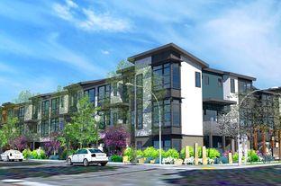 Plan B - One20 Townhomes- Redwood City: Redwood City, California - Pinn Bros.