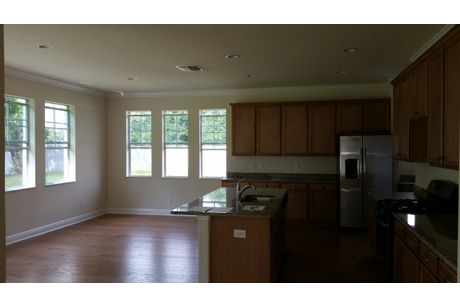 Kitchen-in-Savannah-at-Park Brook in Citrus Park-in-Tampa
