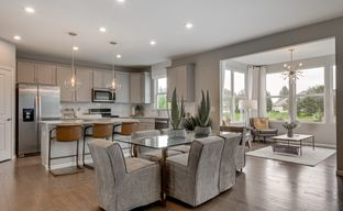 Trails of Woods Creek by Pulte Homes in Chicago Illinois