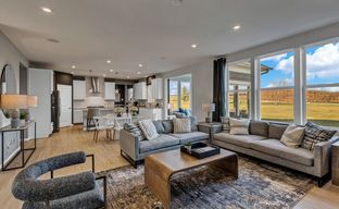 Sheldon Woods by Pulte Homes in Chicago Illinois
