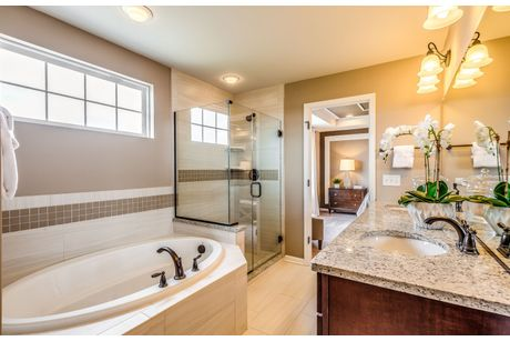 ... Bathroom In Hilltop At Atwater Single Family In Naperville