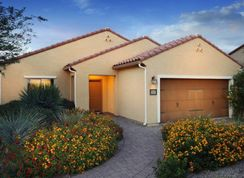 Creosote - Parkside at Anthem at Merrill Ranch: Florence, Arizona - Pulte Homes