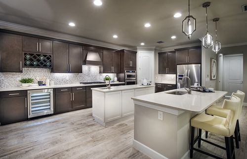 Kitchen-in-Infinity-at-Shoreview at Lakewood Ranch Waterside-in-Sarasota