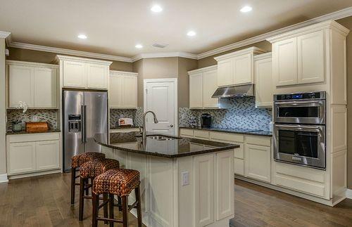 Kitchen-in-Creekview-at-Birchwood Preserve-in-Lutz