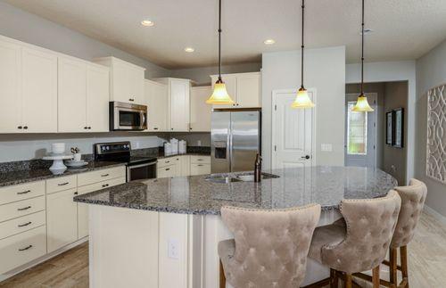 Kitchen-in-Moorpark-at-Birchwood Preserve-in-Lutz