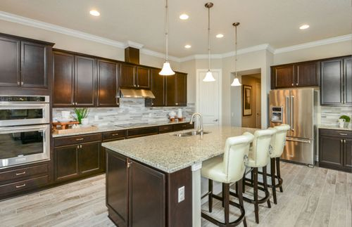 Kitchen-in-Gardenside Grand-at-Enclave at Palm Harbor-in-Palm Harbor